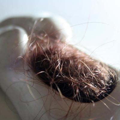 Hairy Womb | Layla Holzer 2013