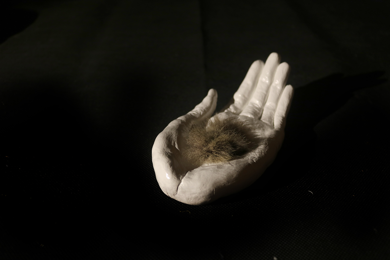 Clay Paw Sculpture inspired by The Company of Wolves